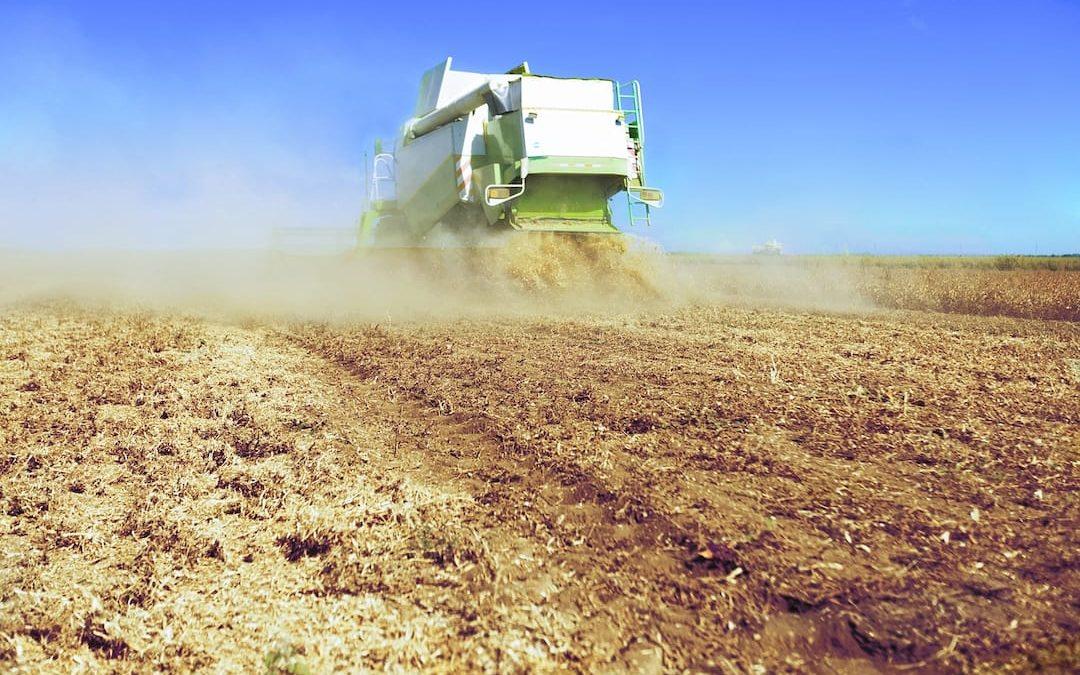 I pesticidi negli alimenti