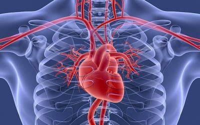 Cattiva circolazione: sintomi e rimedi