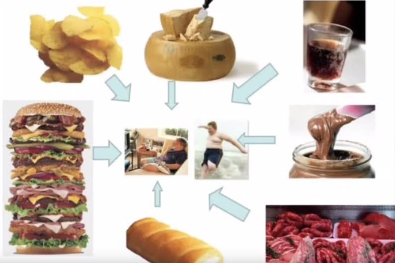 Diaposiiva dieta Franco Berrino